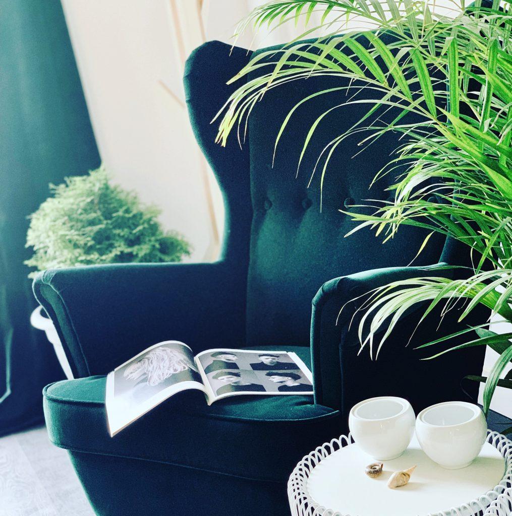 cozy cuts grožio salono aplinka